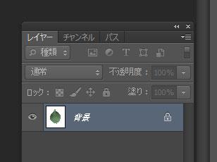 leaf-texture13