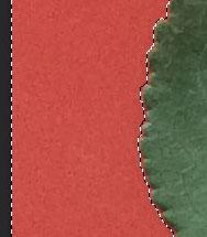 leaf-texture3